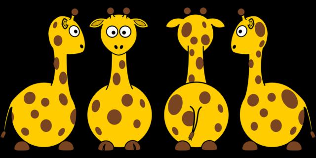 giraffes-35518_1280