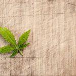 The Effects of Legal Marijuana on Mental Health