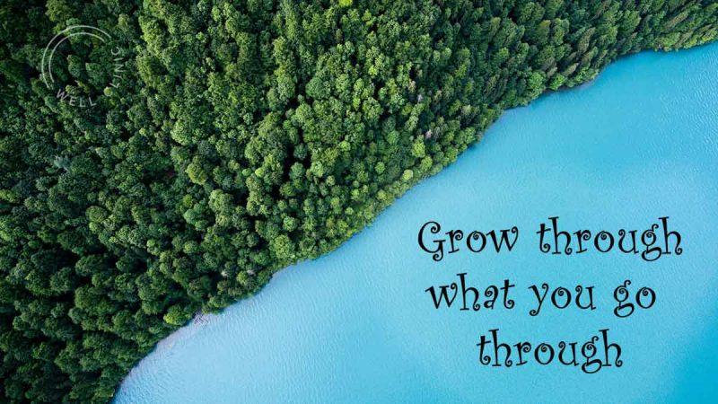 """Grow through what you go through"" quote"