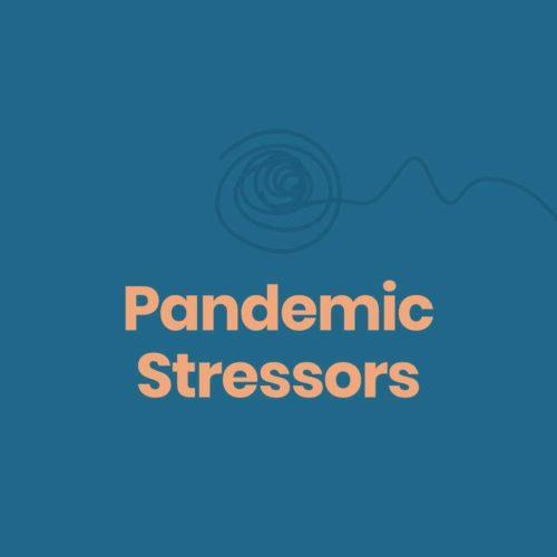 pandemic stressors